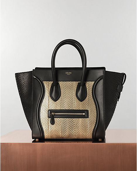 Celine Spring Leather Goods 2013